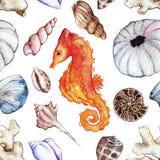 Watercolor sea ocean seahorse seashell coral ammonit urchin seamless pattern Stock Photos