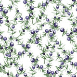 Watercolor seamless background decorative leaves and branches with berries Stock Photo