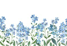 Free Watercolor Seamless Border Of Blue Forget-me-not With Green Leaves On White Background Royalty Free Stock Images - 143566629