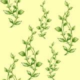 Watercolor seamless botanical leaves pattern stock illustration