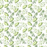 Watercolor seamless botanical pattern. Leaves, twigs, grass. Nat. Ural background royalty free illustration