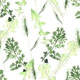 Watercolor seamless botanical pattern. Leaves, twigs, grass. Nat. Ural background vector illustration