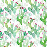 Watercolor Seamless Cactus Pattern Background Royalty Free Stock Photos