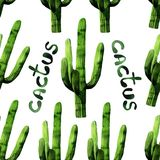 Watercolor seamless cactus pattern background vector illustration