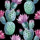 Watercolor seamless cactus pattern Royalty Free Stock Photo