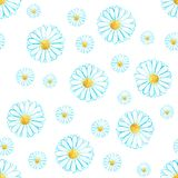 Watercolor seamless camomile flower pattern. On the clean white background for any project Royalty Free Stock Photo
