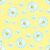 Watercolor seamless camomile flower pattern. On the light yellow background for any project Stock Photos