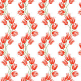 Watercolor seamless floral background with hand drawn flowers. Watercolor red tulips. Seamless floral background with hand drawn flowers. Abstract vintage stock illustration