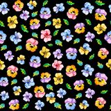 Watercolor seamless floral pattern background of blooming multicolored violets pansies head flowers on black background. Floral stock illustration