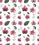 Watercolor Seamless Floral Pattern with Deep Red Orchid Royalty Free Stock Photo