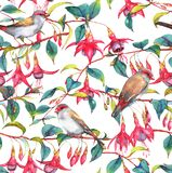 Watercolor seamless floral pattern. Hand-drawn watercolor seamless floral pattern with colorful pink fuchsia branches and finches birds. Tropical exotic flowers Stock Illustration