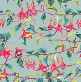 Watercolor seamless floral pattern. Hand-drawn watercolor seamless floral pattern with colorful vibrant pink fuchsia branches. Tropical exotic flowers blossom on Royalty Free Illustration