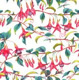 Watercolor seamless floral pattern. Hand-drawn watercolor seamless floral pattern with colorful vibrant pink fuchsia branches. Tropical exotic flowers blossom on Vector Illustration