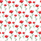 Watercolor seamless floral pattern. Hand paint watercolor poppies background. vector illustration