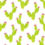 Watercolor seamless opuntia cactus pattern. Hand paint background. Can be used for wrapping paper and fabric design. Watercolor seamless opuntia cactus pattern Stock Images