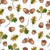 Watercolor Seamless pattern with acorns and oak leaves and branches.Beautiful autumn background vector illustration