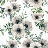 Watercolor seamless pattern with anemone. Hand painted white flower, eucalyptus leaves, berry and juniper isolated on. White background. Illustration for design royalty free illustration