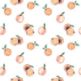 Watercolor seamless pattern with apricots on white Stock Photo