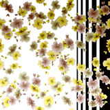 Watercolor seamless pattern autumn flowers on a white and black stripes background Stock Image