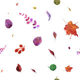 Watercolor seamless pattern with autumn leaves. Stock Photography