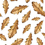 Watercolor seamless pattern autumn leaves of oak. Hand painted watercolour autumn background of falling leaf, design for fabric, textile, wrapping paper, card Stock Photography