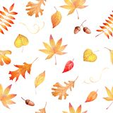 Watercolor seamless pattern with autumnal colorful leaves Royalty Free Stock Images