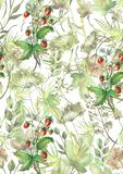 Watercolor seamless pattern, background with a floral pattern. Beautiful vintage drawings of plants, flowers,willow branch, berry. Branches, grass,chamomile royalty free illustration
