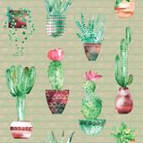 Watercolor seamless pattern background with succulents and cactus in the pots. Seamless pattern can be used for scrapbooking, wallpaper, cards and so on Stock Photo