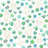 Watercolor seamless pattern background with succulents, cactus and terrariums. Seamless pattern can be used for scrapbooking, wallpaper, cards and so on Royalty Free Stock Image