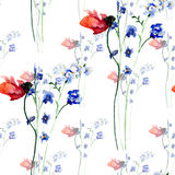 Watercolor seamless pattern beautiful spring flowers Stock Photography