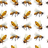 Watercolor seamless pattern with bee Stock Photos