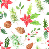 Watercolor seamless pattern with berries and cones Stock Photo
