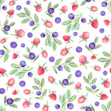 Watercolor seamless pattern with berries royalty free illustration