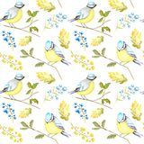 Watercolor Seamless pattern with Bird BlueTit sitting on the oak Branch, isolated on white background. royalty free illustration