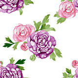 Watercolor Seamless Pattern with Blooming Flowers Stock Images