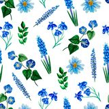 Watercolor seamless pattern with blue flowers, aster, lupine, ipomoea, lobelia, muscari, isolated stock illustration
