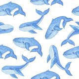 Watercolor seamless pattern with blue whale, cartoon style. Watercolor seamless pattern with blue whale in cartoon style. Sea mammal. Nautical design Stock Photography