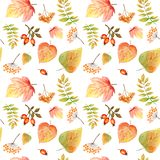Watercolor Seamless pattern with bright colors forest leaves and branches. Beautiful autumn background in orange, green stock images