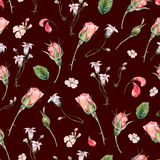 Watercolor seamless pattern with buds of rose Stock Images