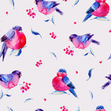 Watercolor seamless pattern with bullfinches. Winter vintage watercolor seamless pattern with bullfinches. Holiday Christmas design elements. Christmas Vector Illustration