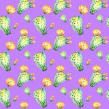 Watercolor seamless pattern. Watercolor cactus seamless floral pattern background, wallpaper, fabric. Ultraviolet. Watercolor seamless pattern. Watercolor cactus Stock Photos