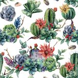 Watercolor seamless pattern with cactuses and red, yellow flowers. Hand painted cereus, succulent, berries, branch and Stock Image