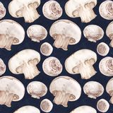 Watercolor seamless pattern with champignons Royalty Free Stock Image