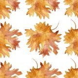 Watercolor seamless pattern colorful autumn maple leaves in a round dance isolated on white background. Flower pattern for beautiful wedding invitation design vector illustration