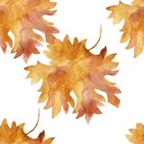 Watercolor seamless pattern colorful autumn maple leaves in a round dance isolated on white background. Flower pattern for beautiful wedding invitation design royalty free illustration
