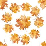 Watercolor seamless pattern colorful autumn maple leaves in a round dance isolated on white background. Flower pattern for beautiful wedding invitation design stock illustration