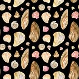Beige and pink watercolor seamless shell pattern on black vector illustration