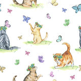 Watercolor seamless pattern with cute kittens. Baby cats playing with butterflies Stock Image