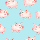 Watercolor seamless pattern with cute piggy. Animal pig watercolor illustration. Hand painted art work on blue background stock photo