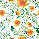 Watercolor seamless pattern with dandelion. Floral background. Stock Image